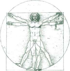 Анатомия по Аристотел