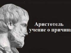 Аристотель — учение о причинах